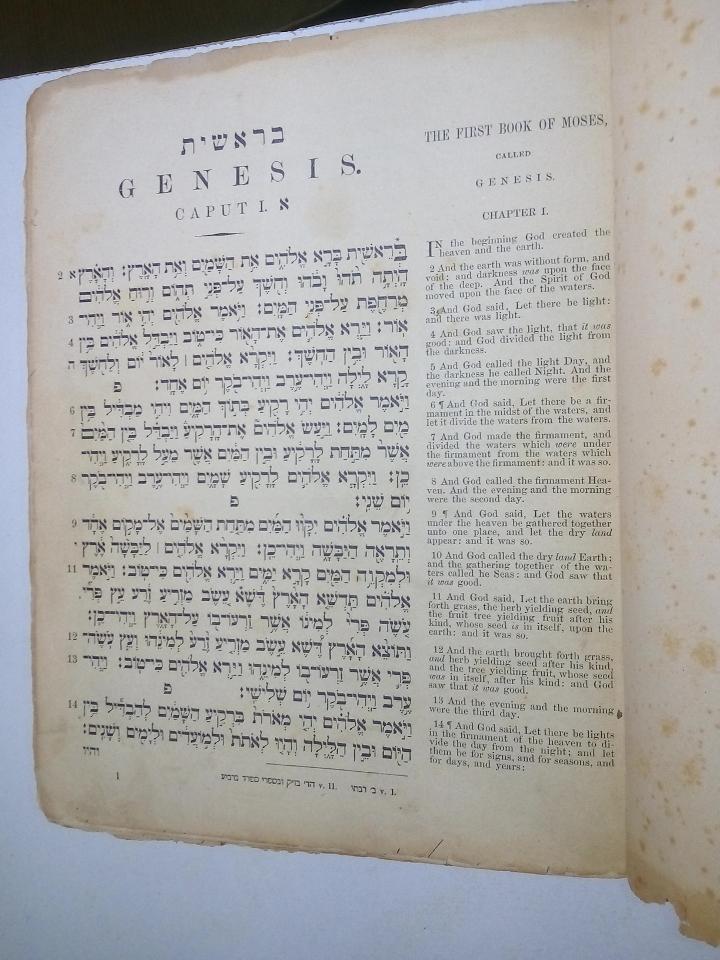 genesis1877
